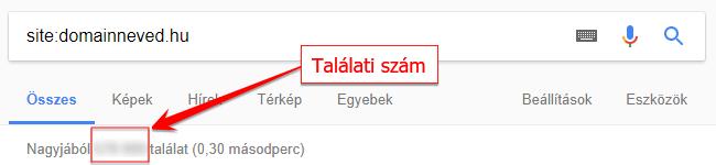 Google találati szám